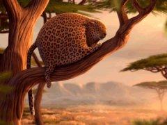 Rolling Safari: Sleeping beauty