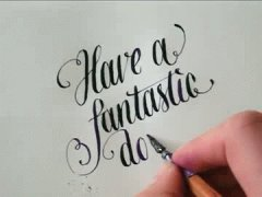 Have a fantastic day!