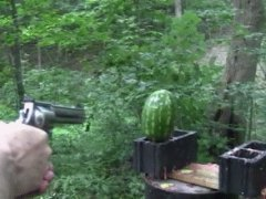 500 Magnum vs watermelon
