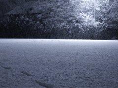Slow snow