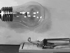 Light bulb in mouse trap in slow motion