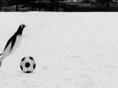 Soccer in Antarctica