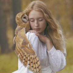 The Girl with the Owl