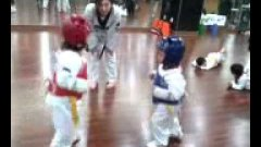 Five Year Olds Taekwondo Fight