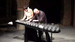 Sugar Plum Fairy On Glass Harp