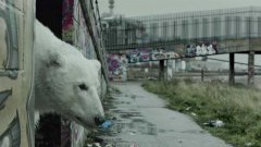 A homeless polar bear in London