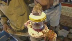This is what snake venom does to blood