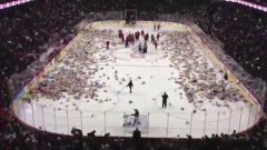 25,000 teddy bear toss at junior hockey game