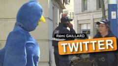 Remi dressed as Twitter bird prank