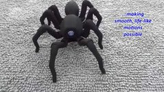Realistic spider octopod robot