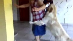 Dog Loves Granny Watch The Video Online