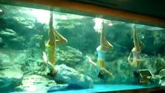 Synchronised swimming on a Michael Jackson song
