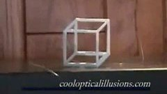 Famous necker cube illusion.