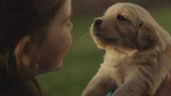 Chevy's Puppy Dog Commercial