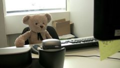 Stuff Animal Bear Goes To Work