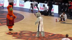 Birdie Vs Sly Fox - NBA mascots dance battle