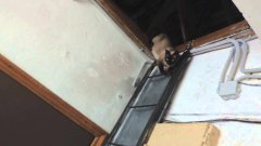 Cat climbs down ladder like a human