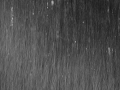 Black and white rain