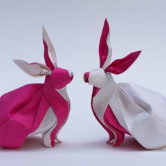 Twin Rabbits