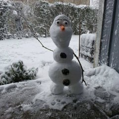Olaf the Danish snowman