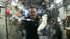 Wet Washcloth In Space