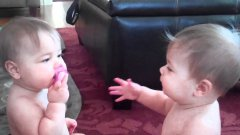 Two Babies Fight Over Pacifier