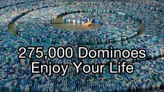 275,000 dominoes Guinness world record