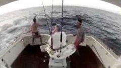Marlin jumps into boat, fisherman jumps out