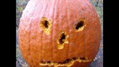 Carving Pumpkin By Shooting With Gun