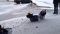 Dad Takes Kids on Laundry Basket Sled Ride