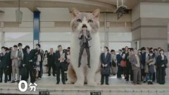 Japanese Gum Commercial With Giant Cat