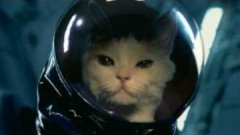 Cat Goes To Space Russian Lotto Commercial