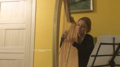 The Run, author's music on the harp